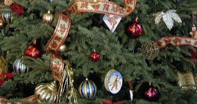 A Shocking Number of Insects Could Be Hiding in Your Christmas Tree