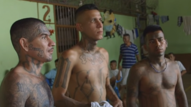 Border Patrol Agents Arrest Illegal Alien Gang Members and Child Rapists in Texas