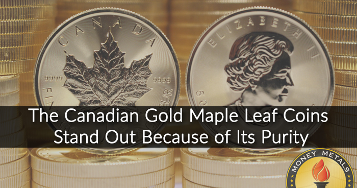 1 Oz Canadian Maple Leaf Gold Coin from Money Metals Exchange