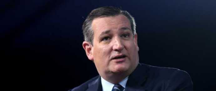 Cruz's ObamaCare Fix Gets Support from House Conservatives