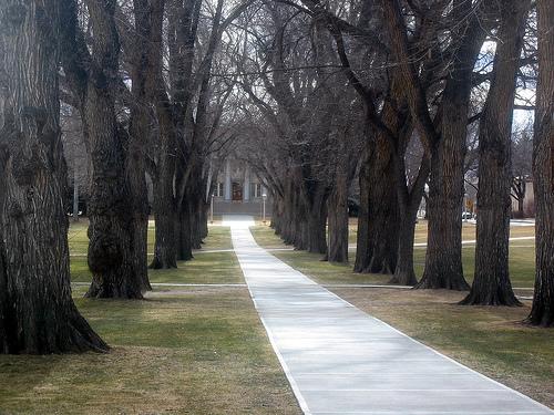 Colorado State University campus photo