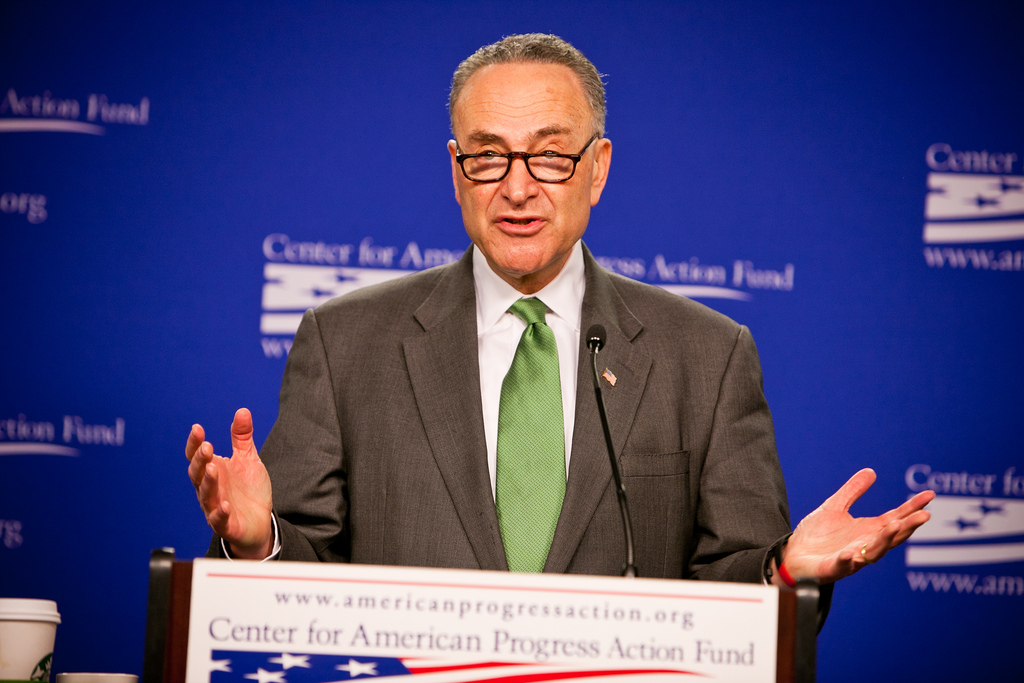 Charles Schumer photo