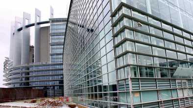 European Union's Parliament Condemns US Treatment of Migrants