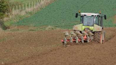 Farmer Gets $2.8 Million Fine for Plowing His Own Field