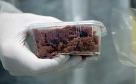 FDA and USDA Set to Regulate 'Lab Meat' for American Consumption