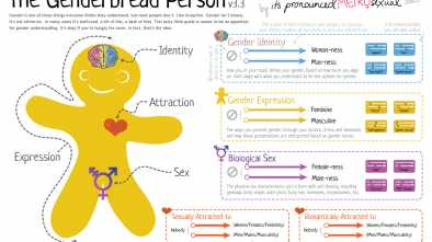 'Genderbread' Handout Explains LGBTQ Terms to Middle Schoolers