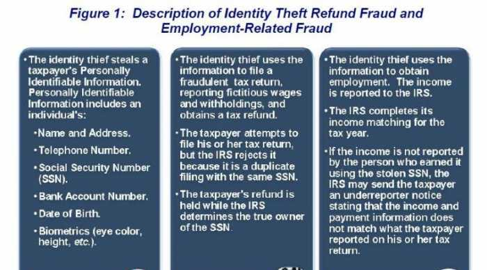 IRS Documented 1.3M Identity Thefts by Illegal Aliens