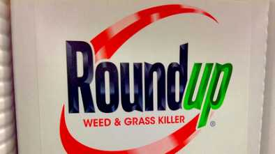 Monsanto's Roundup Was Never Tested for Cancer Risk