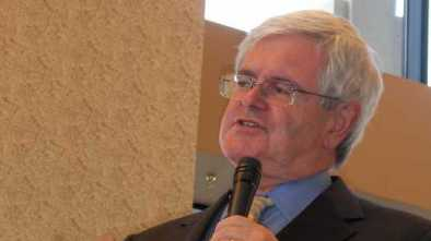 Newt Gingrich Criticizes Scaramucci: 'More Pugnacious Than Effective'