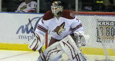 NHL's Coyotes Bank on Arizona Taxpayers to Keep Team in State