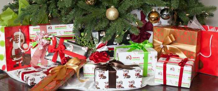 North Carolina Family Creates African American Santa Claus for Diverse Families