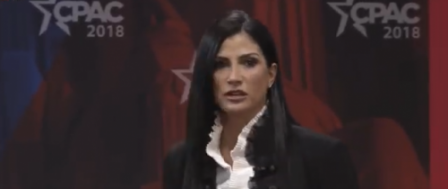NRA Spokeswoman: 'Legacy Media Love Mass Shootings'