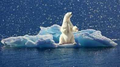 Obama Administration Falsified 'Climate Change' Data