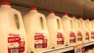 PETA: Milk Is a 'Symbol of White Supremacy' 1