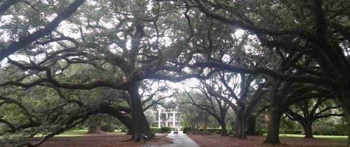Pinterest, The Knot Agree to Stop 'Glorifying' Plantation Wedding Venues