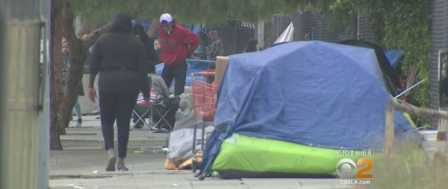 Rat Infestation at City Hall Linked to Homeless Encampments in Sh**hole L.A.