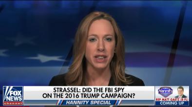 Secret FBI & CIA Mole Reportedly Spied on Trump Campaign