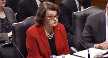 Senators Hear About Violence, Bias Against Conservatives on Campuses