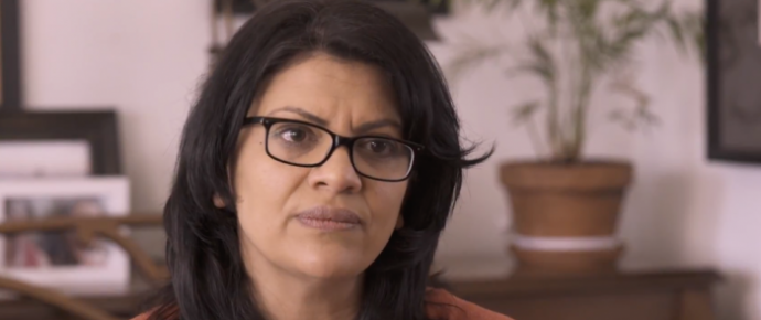 Tlaib Calls on Leftist Activists to 'Shut Down' ICE If Congress Won't