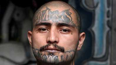Trump Deports Hundreds of MS-13 Gang Members