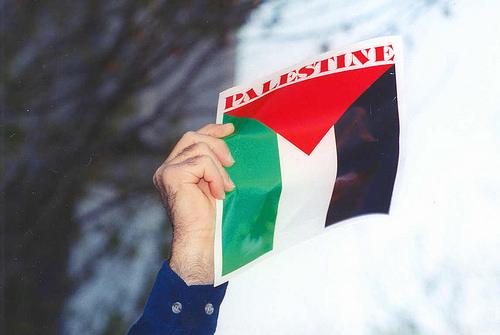 Palestinian flag photo