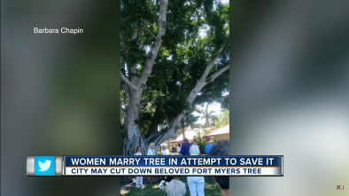 Woman 'Marries' Tree In Effort to Save It